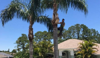 Tree Trimming Services in Jacksonville, FL