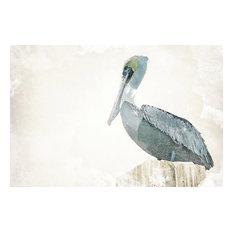 """Watercolor Pelican"" Canvas Art, 36""x24"""