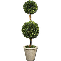 Uttermost 60106 Uttermost Two Sphere Topiary Preserved Boxwood