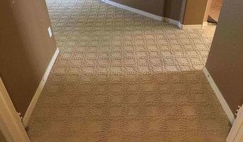Berber Carpet Pet Damage Repair