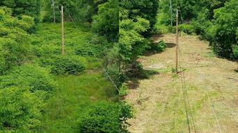 Green Valley Tree LLC