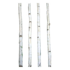 Northern Boughs - Four White Birch Poles 8' - Fire Pit Accessories