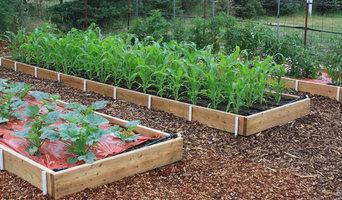 Susan's Vegetable Garden