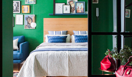 Houzz Tour: A Clever Layout Opens Up This Tiny Studio Flat