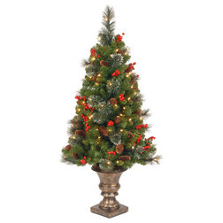Traditional Christmas Trees by Ergode