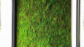 Живой мох в интерьере
