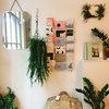 海外のインテリアショップに見る、観葉植物ディスプレイのセンスアップポイント7選