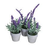 Artificial Lavender Plants in Stone Pots, Set of 3