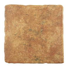 """SomerTile 7.75""""x7.75"""" Costa Arena Decor Ceramic Floor/Wall Tile, Marron"""
