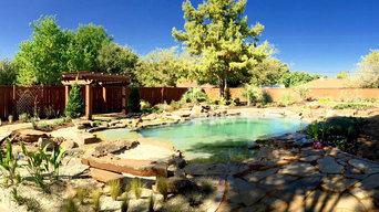 Natural/Bio Swimming Pools