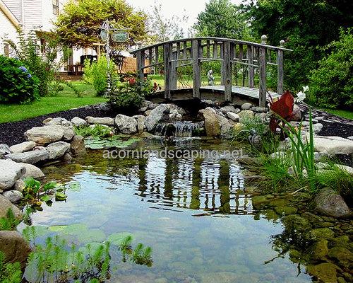 Goldfish ponds houzz for Koi pool water gardens thornton