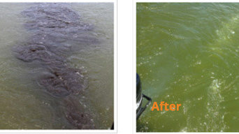 Before and After Lake Aeration