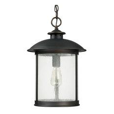 Dylan 1-Light Outdoor Hanging Lantern, Old Bronze