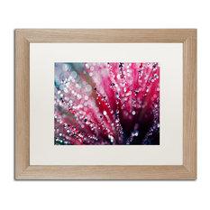 """Beata Czyzowska Young 'Symphony in Pink' Art, Birch Frame, 16""""x20"""", White Matte"""