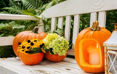 Pynt haven op med græskar til Halloween – så let kan det gøres!