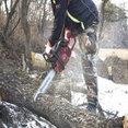 Ladue Tree Service's profile photo