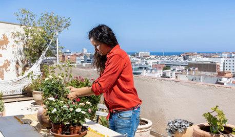 En Barcelona, un loft impresionante con vistas al mar
