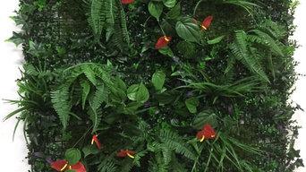 vertical wall plants