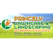 Princey Lawn Care's photo