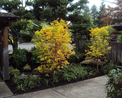 Modern Asian Garden Houzz