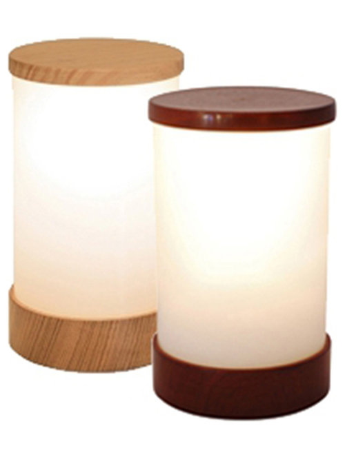 Neoz Cordless Rechargeable Table Lamps   Products