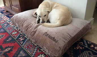 Marcus the lab needs a new bed