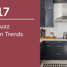 2017 CA Houzz Kitchen Trends Study