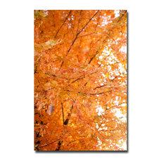 'Orange Leaves' Canvas Art by Ariane Moshayedi