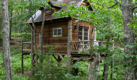7 Magical Treehouses and Backyard Forts