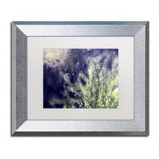 """Czyzowska Young 'Secrets of Nature' Art, Silver Frame, 11""""x14"""", White Matte"""