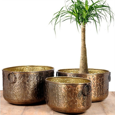 Modern Indoor Pots & Planters by MaddHome.com
