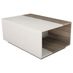 Contemporary Coffee Tables by Decorotika USA Inc.