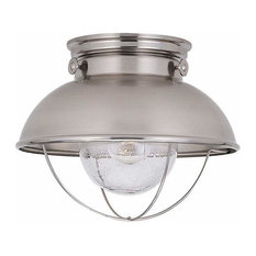 1-Light Ceiling Brushed Stainless