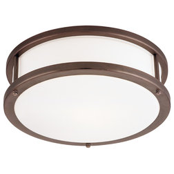Craftsman Flush-mount Ceiling Lighting by Access Lighting