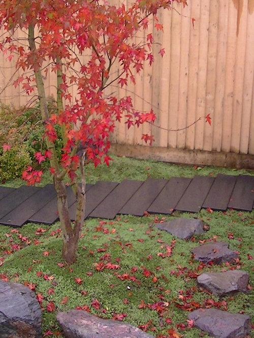 Modern japanese garden at design studio for Contemporary japanese garden design