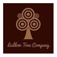 Ludlow Tree Company's photo