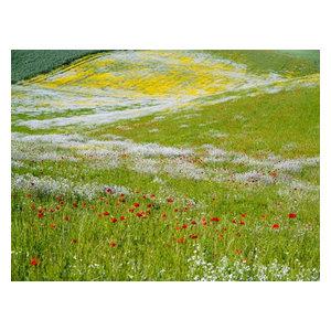 "Pixtury ""Dipinto Lucano"" Photo Print, Canvas, 30x40 cm"