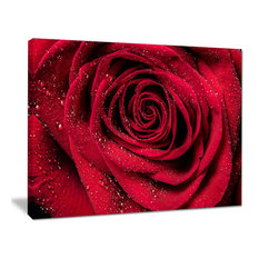 """""""Red Rose Petals With Rain Droplets"""" Canvas Print, 20""""x12"""""""