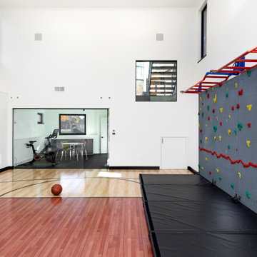 Home Indoor Fitness Center with Climbing Wall and Monkey Bars