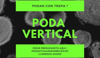 PODAS VERTICALES -SERVICIOS INTEGRALES PARA ÁRBOLES | LLÁMENOS  663 777 576