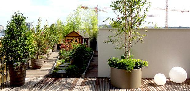 Quelles plantes pour des pots d 39 ext rieur xxl for Plante terrasse hiver