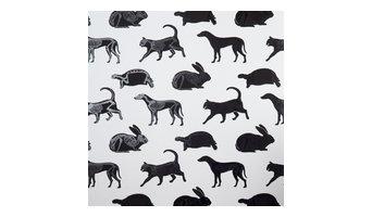 "PaperBoy Interiors ""Animal Magic"" Wallpaper"