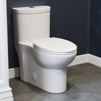 Sublime One Piece Elongated Toilet, Glossy White, Dual Flush
