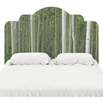 """J. Paul Moore - Birch in Uncompahgre National Forest Headboard Decal, King, 76""""x38"""" - Designed to look like the real deal, these adhesive headboard decals are printed on our popular FabTac material the same material we use for our wallpaper. Best part? They can be removed, reused, and repositioned so they can move with you! Our adhesive headboards are the perfect thing to spruce up your bedroom or guest room."""