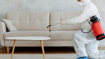 Pest Control Services in Happy Valley
