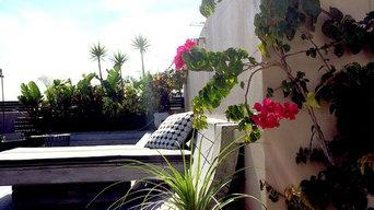 Bondi Beach Rooftop