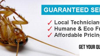 Domestic Pest Control Toowoomba