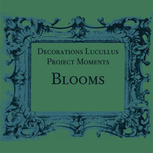 Project Moments - Blooms
