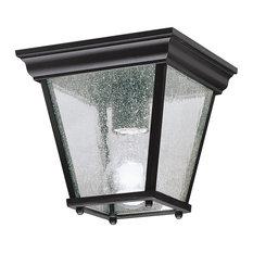 Outdoor Ceiling 1-Light, Black