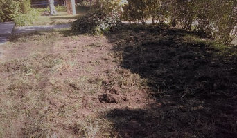 Lawn Revival Service! From weeds to Geez! in 8 weeks! (fall seeding)